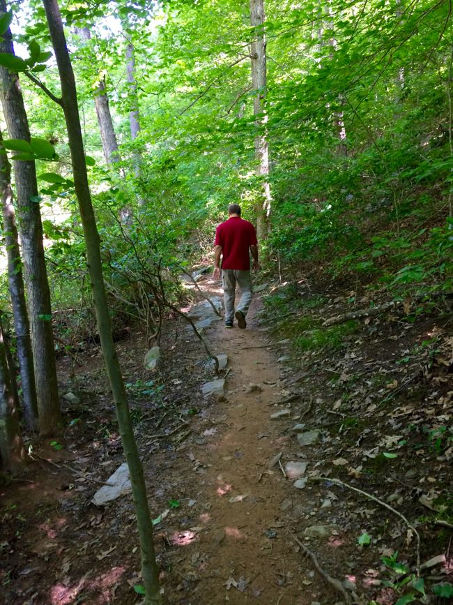 Father's Day hike on the Bull Run Occoquan trail in Clifton VA