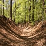 Bull Run access trail Clifton Va
