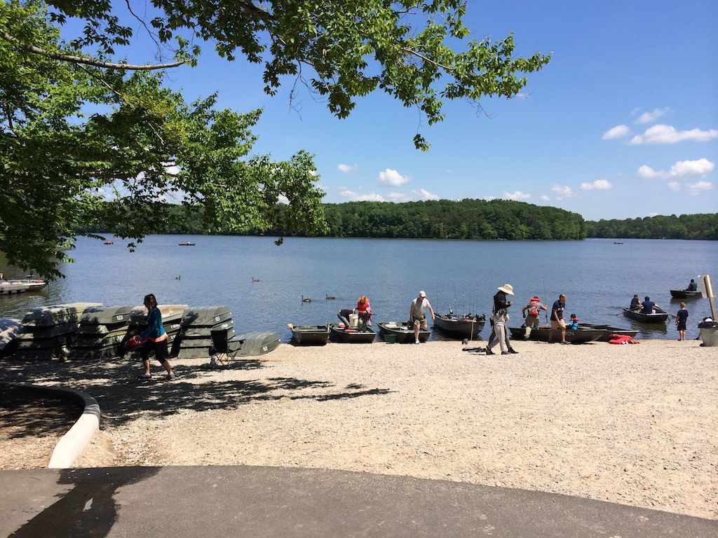 Burke Lake Boating starts at the Marina