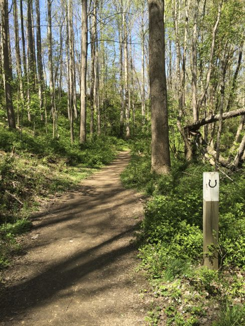 Horse-trail CCT seg9