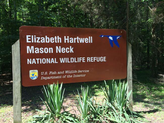 Elizabeth Hartwell Wildlife Refuge