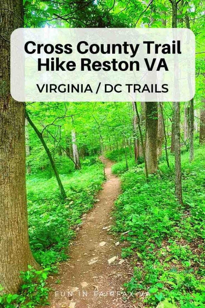 Hike or bike Fairfax CCT segment 8 to explore woodland trails in the Difficult Run Stream Valley, a section of the W&OD, and paths in Reston Virginia.