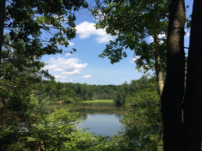 Kane's Creek Mason Neck