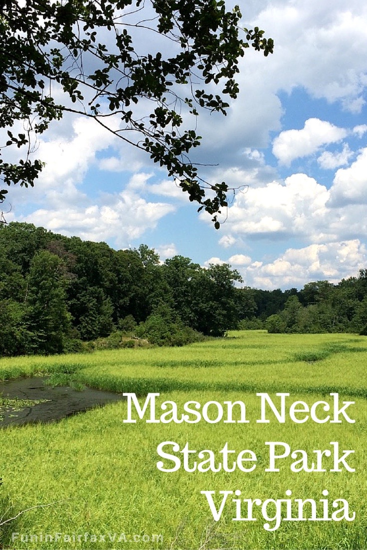 The Mason Neck area of Fairfax County Va is an overachiever of exploring fun with excellent hiking and lovely views on national and state parkland.