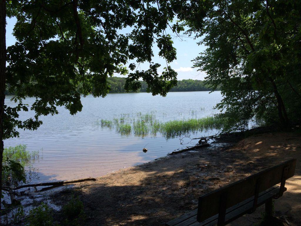 Burke Lake bench