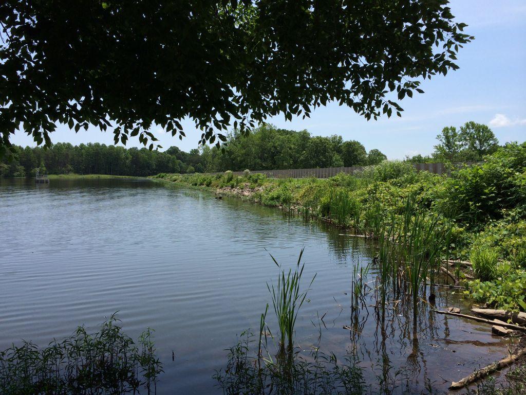 Burke Lake dam