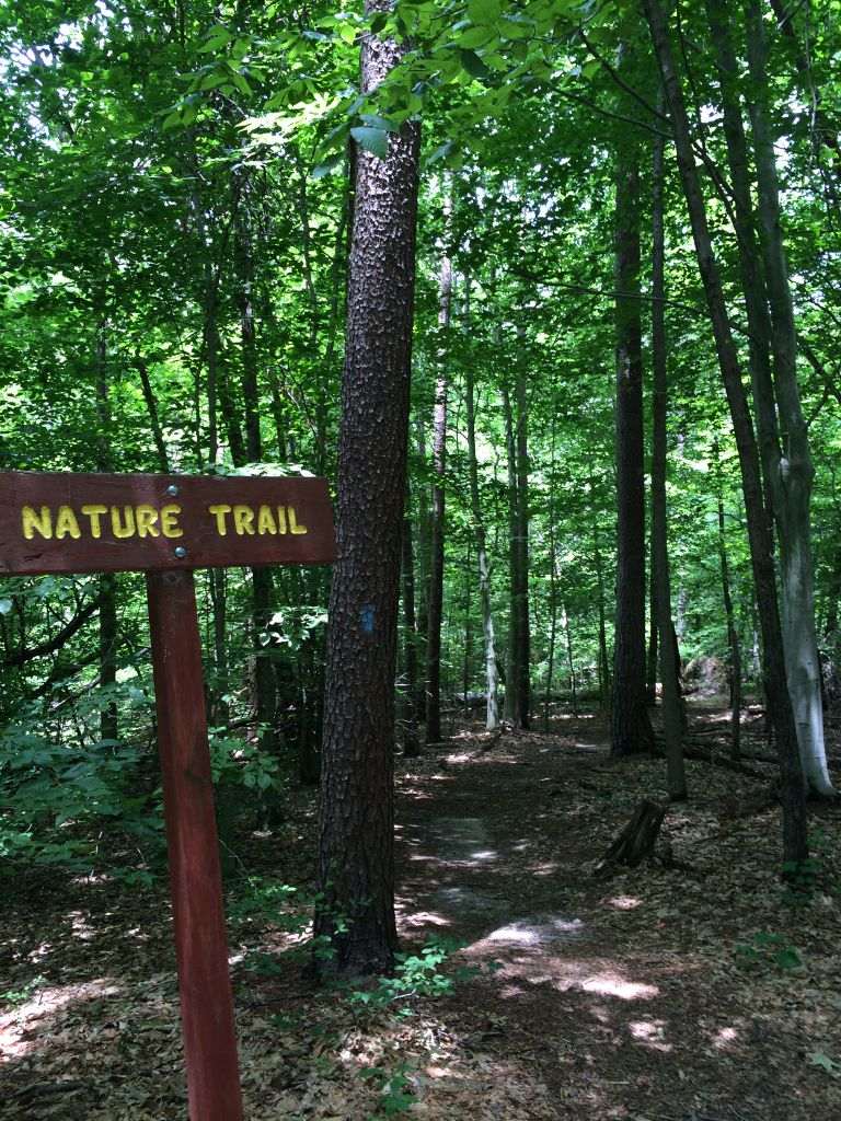 Burke Lake nature trail