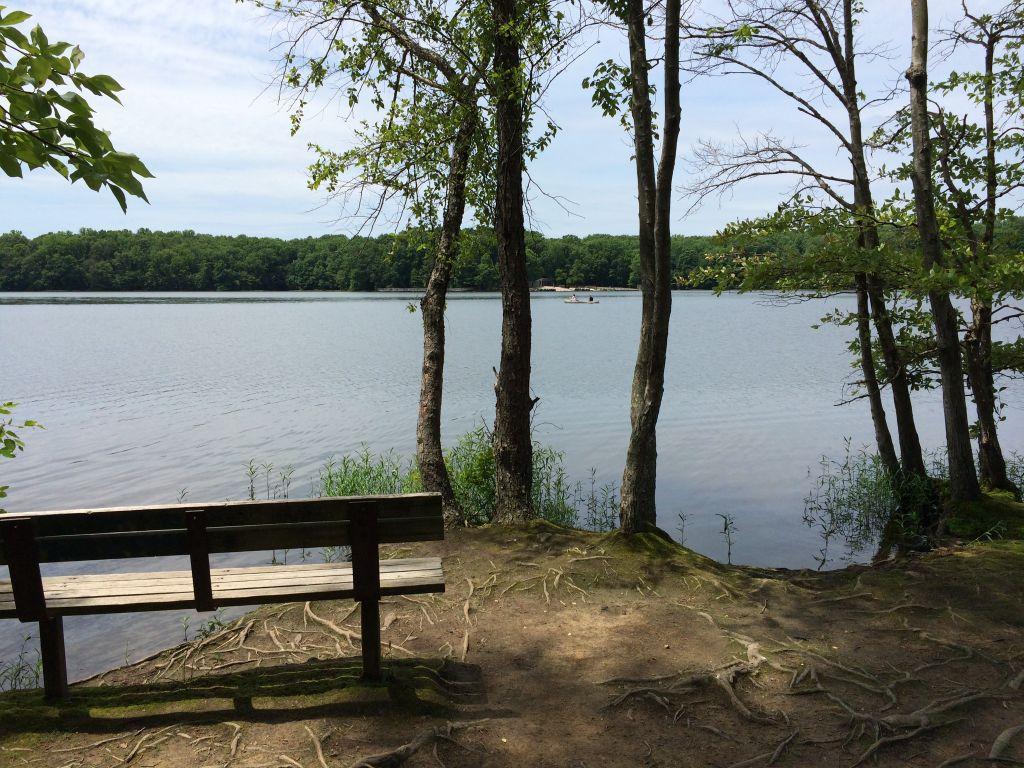 Burke Lake picnic spot