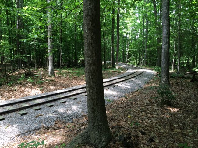 Burke Lake train tracks
