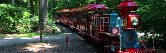 Burke Lake train