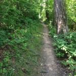 CCT seg 7.2 path