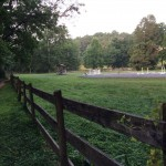 CCT seg7 horse farm