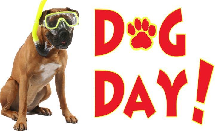 Dog Day NOVA Waterpark