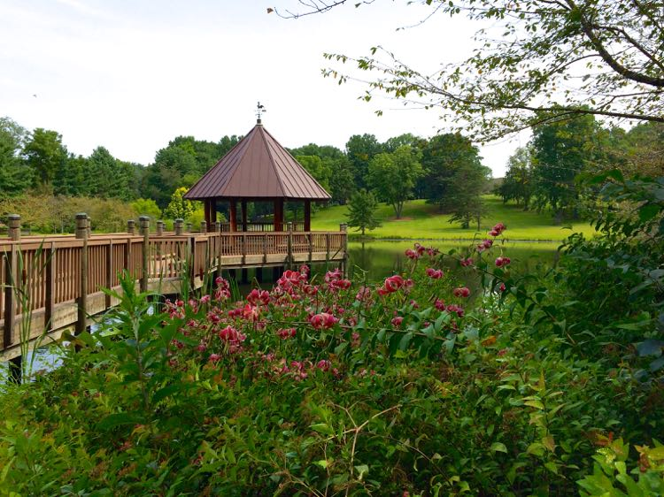 Gazebo at Meadowlark Botanical Gardens Vienna Virginia