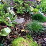 Meadowlark fairy garden