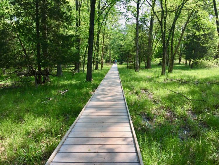 Boardwalk near the Stone Bridge Manassas Battlefield NP