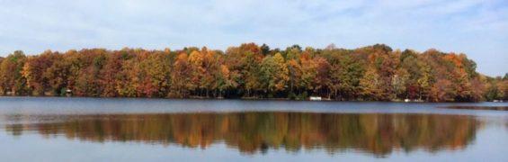 Lake Thoreau foliage, Reston VA