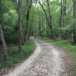 Long Branch SV trail 2