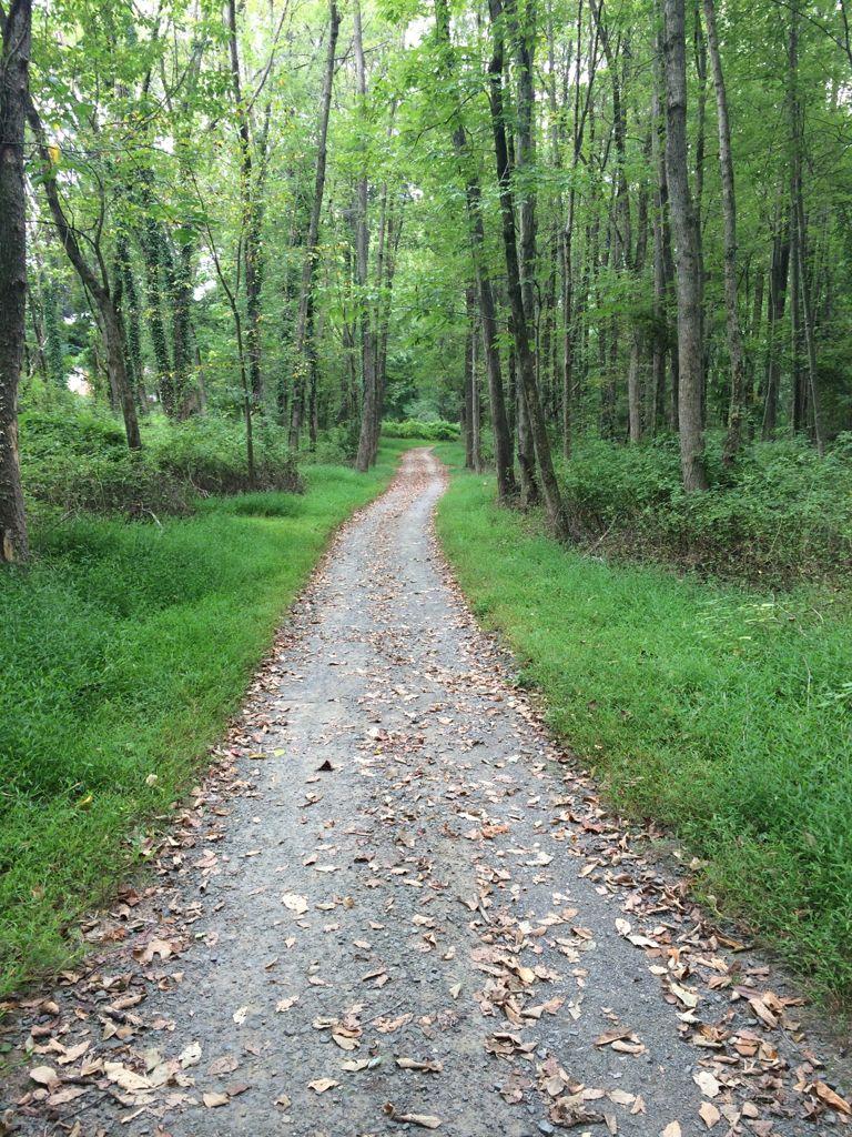 Long Branch SV trail