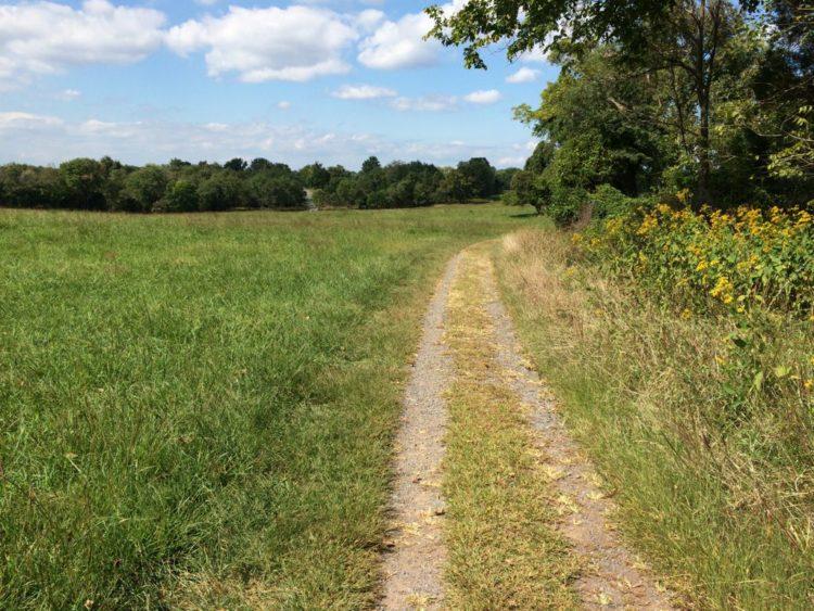 Trail along meadow Manassas