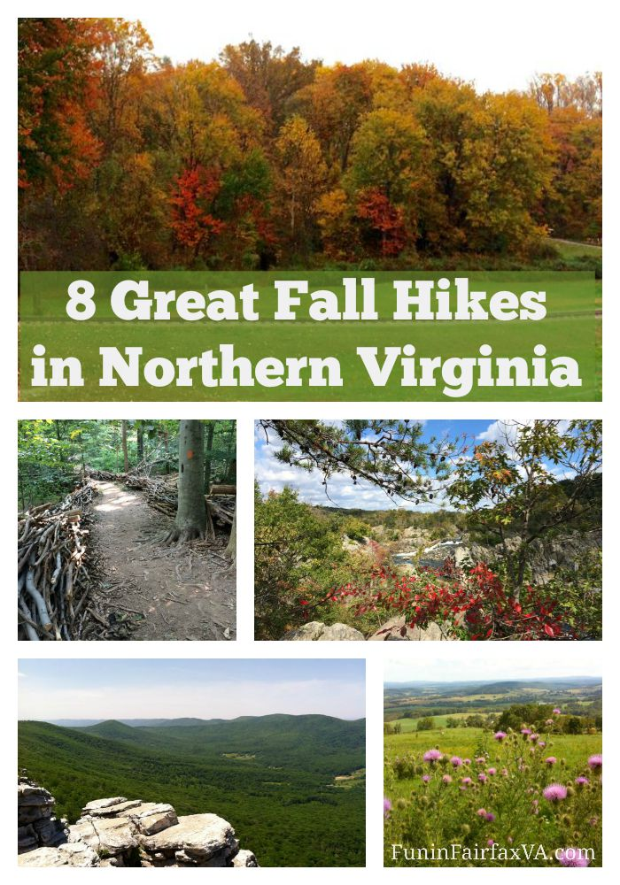 8 great Fall hikes in Northern Virginia (some with a Virginia winery visit), perfect for enjoying cooler, dryer weather and changing foliage.