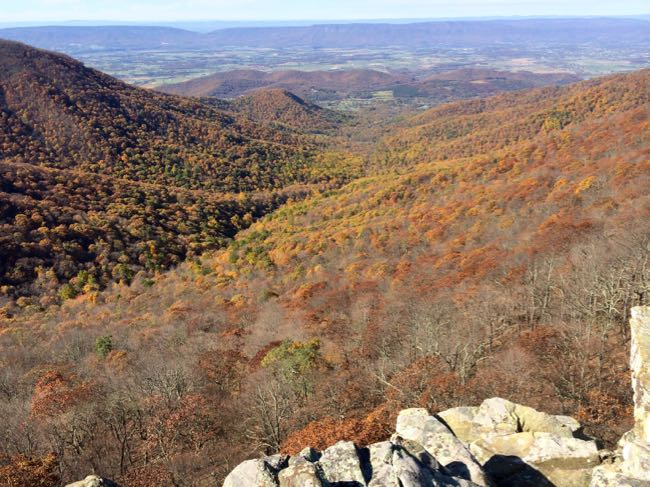 View from Crescent Rock in Shenandoah National Park Virginia