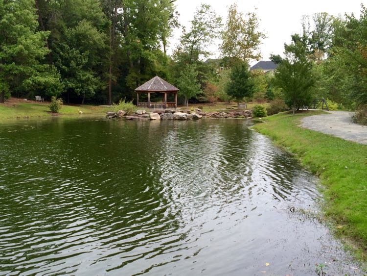 Stroller friendly trails and pond at Green Spring Gardens