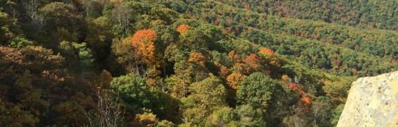 Skyline Drive foliage viewing