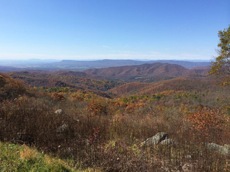 Westward vista Shenandoah late October