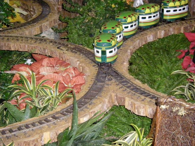 Caterpillar Train, Botanical Garden DC