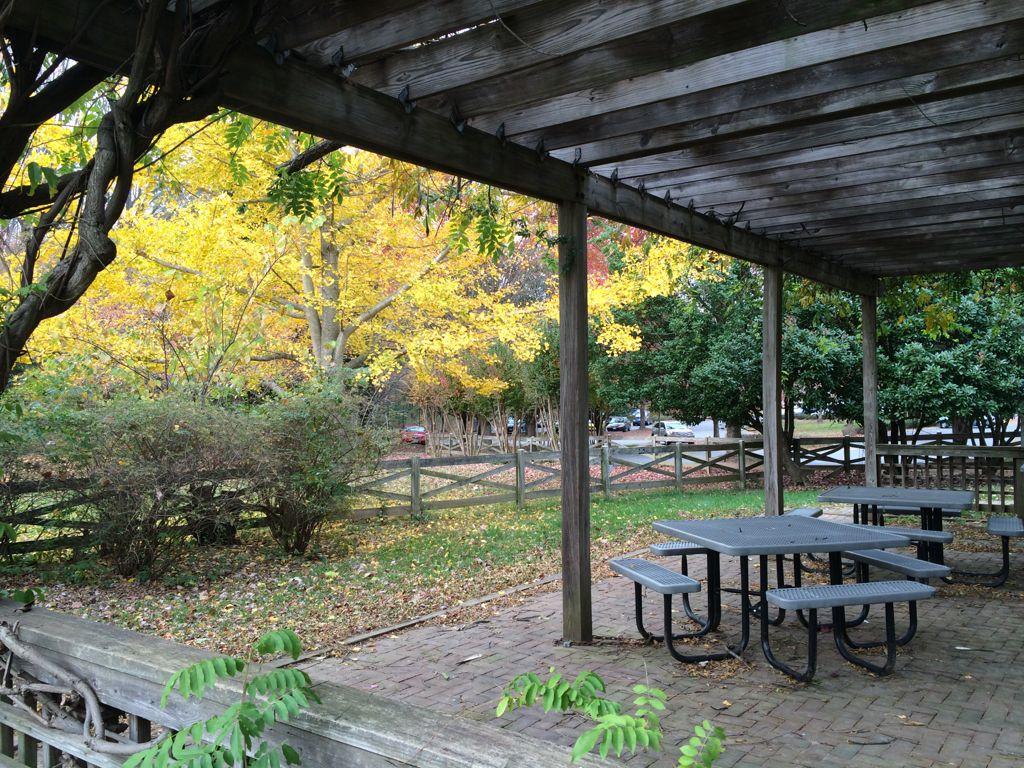 Meadowlark picnic spot