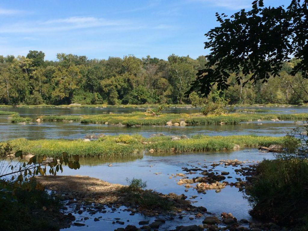 Potomac view Turkey Run