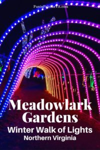 Meadowlark Gardens Winter Walk of Lights in Northern Virginia is a beautiful holiday light displays perfect for a fun night out close to Washington DC