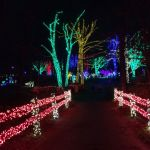 Winter Walk of Lights pathway