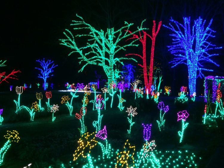 Meadowlark Garden Winter Walk of Lights display