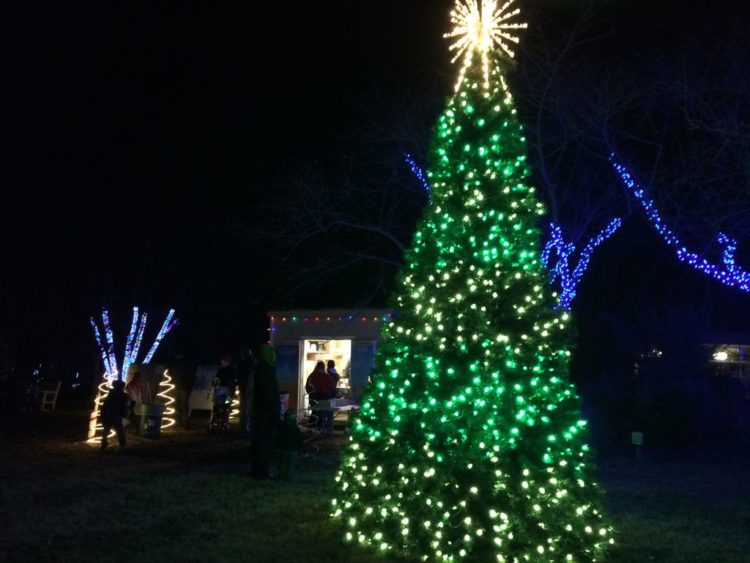 Meadowlark Winter Walk of Lights treat stop