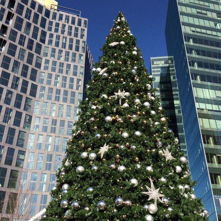 Christmas tree on Tysons Corner Plaza