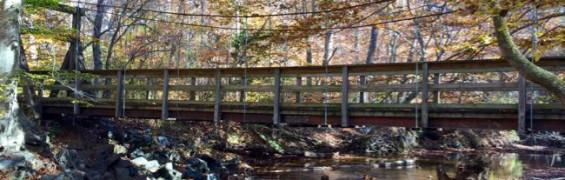 Bridge over Quantico Creeek, Prince William Forest
