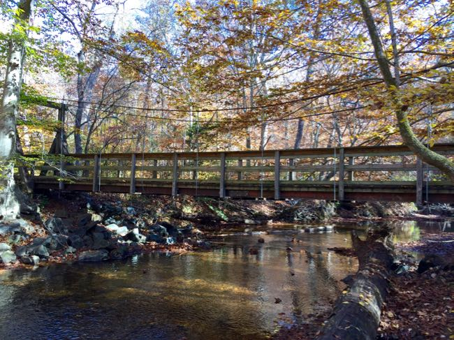 Bridge over Quantico Creeek, Prince William Forest