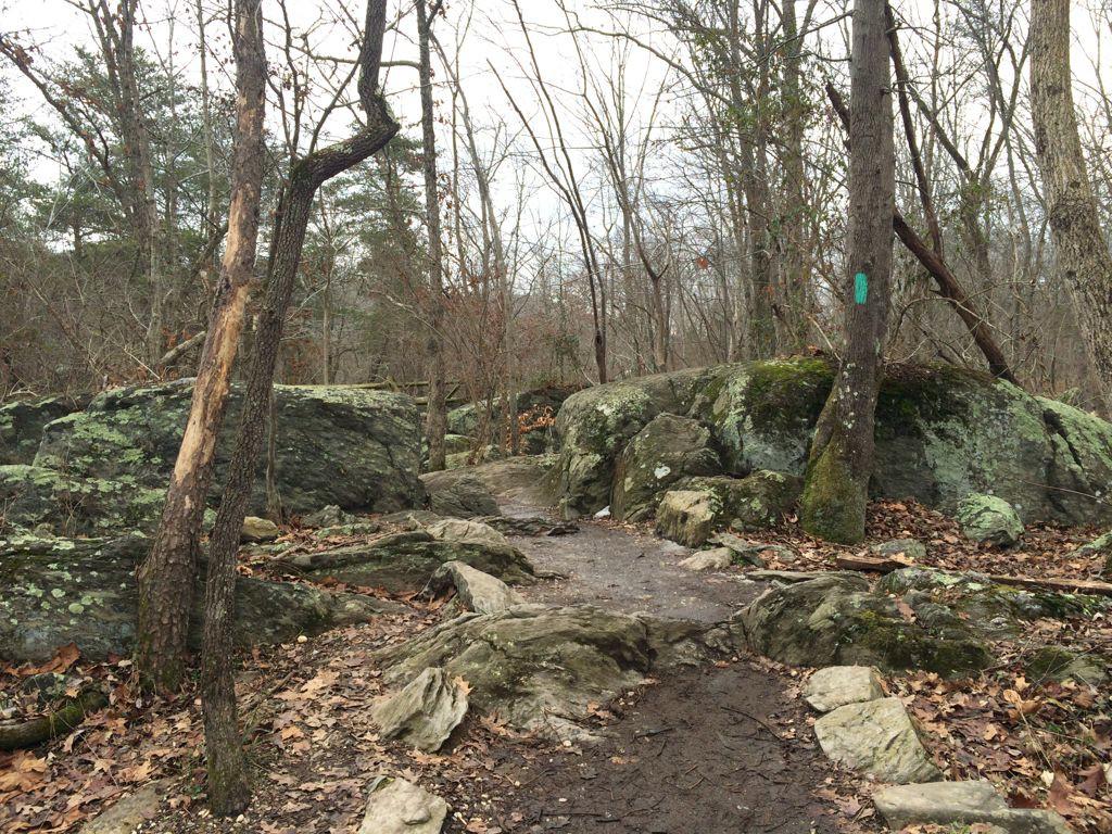 GFNP River Trail rocks