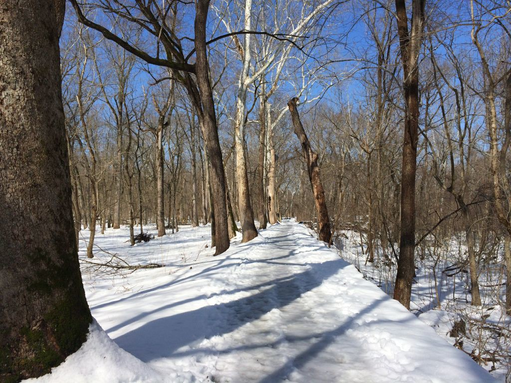 Great Falls snowy path