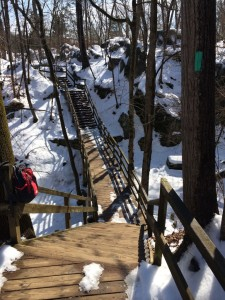 Great Falls winter bridge