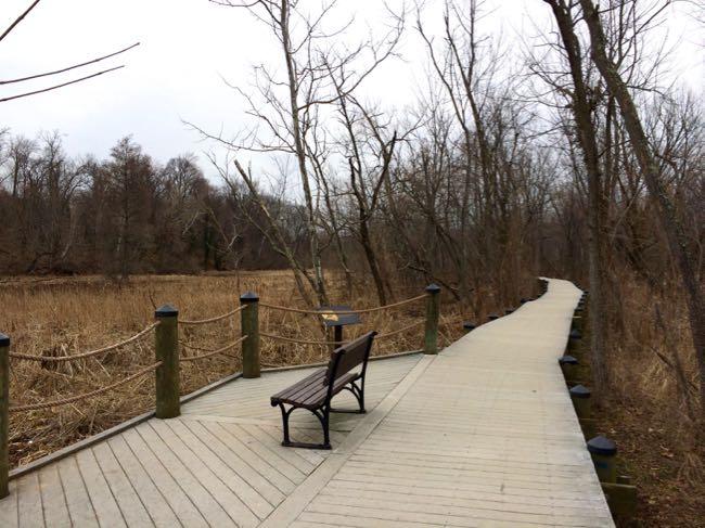 Roosevelt Island bench along the boardwalk in winter