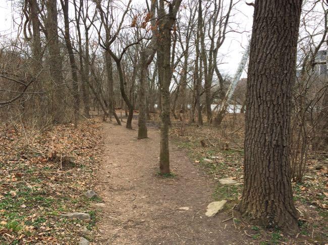 Roosevelt Island trail
