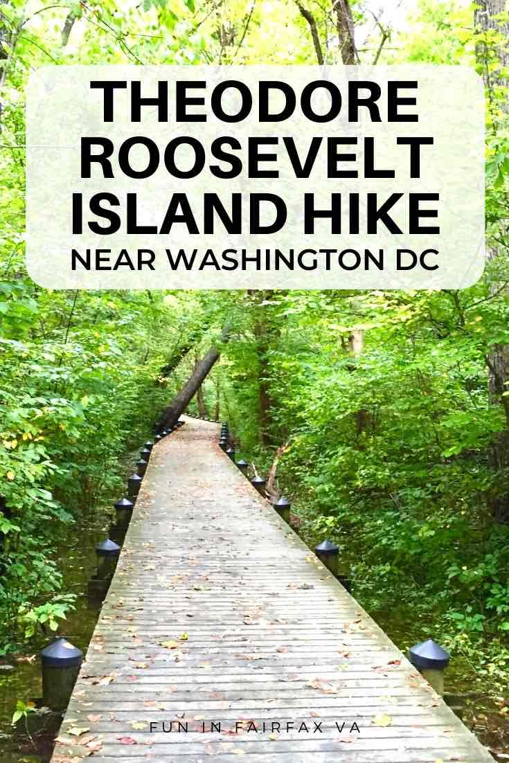 A Theodore Roosevelt Island hike offers a slice of nature at the edge of DC, with a network of dirt trails, a long boardwalk, and some hidden surprises.