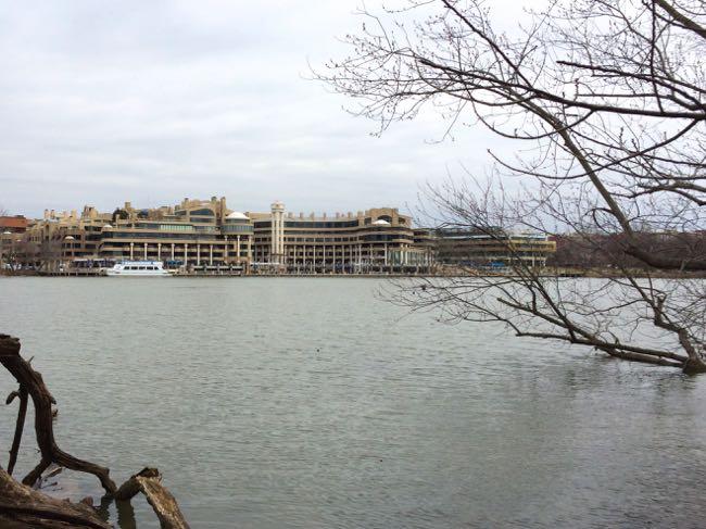 Washington Harbor view Roosevelt Island