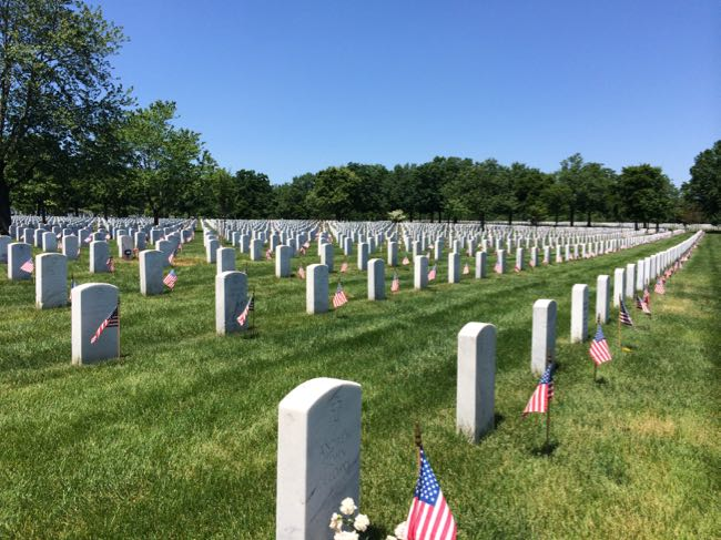 Flags In during Memorial Day Weekend at Arlington National Cemetery