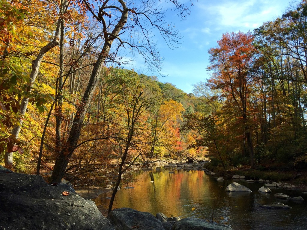 The Cross County Trail follows Difficult Run in Great Falls Virginia