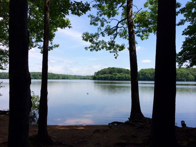 8 great summer hikes in northern virginia fun in fairfax va for Burke lake fishing