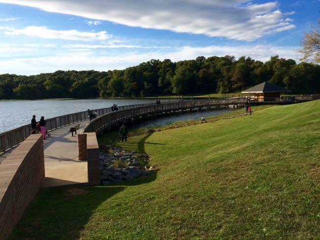 Marina at Lake Fairfax Park